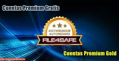 File4Safe Premium